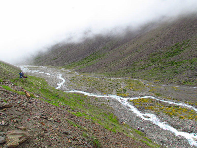 Rupi Nala Pass Trekking   27 Day.