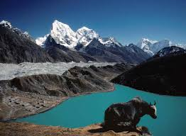 Gokyo ChoLa Pass  Everest Base Camp Trek (5420m.)